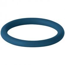 Produktbild: Geberit Dichtung FKM, blau 18mm